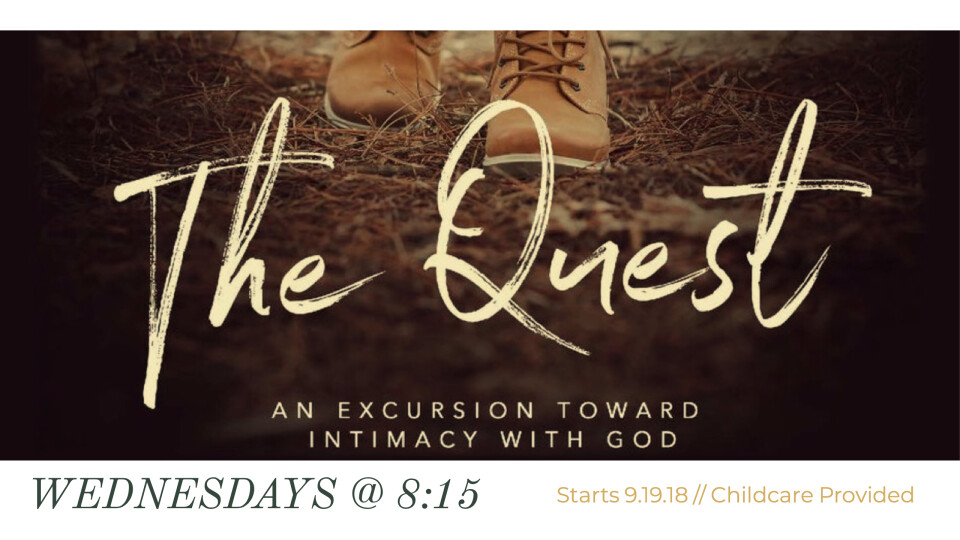 Ladies Bible Study [The Quest by Beth Moore]